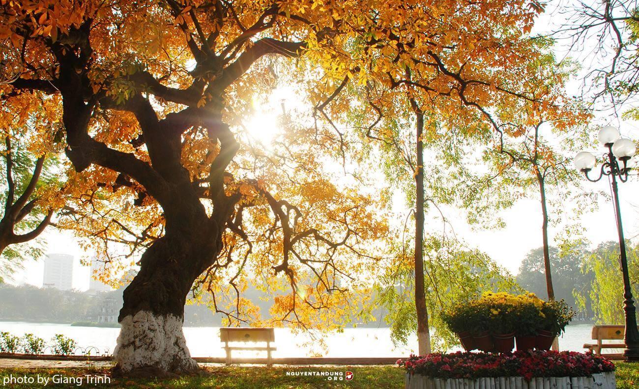 Đọc câu thơ, nhớ một mùa thu Hà Nội