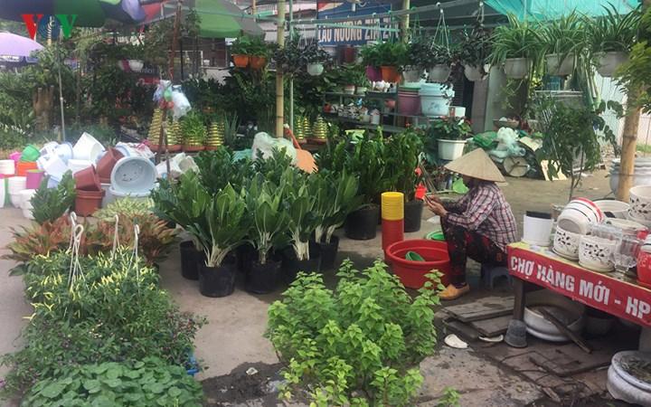 Khám phá phiên chợ Hàng độc đáo nhất Hải Phòng