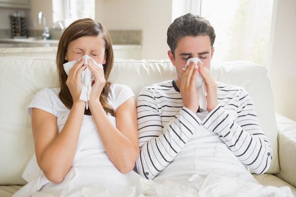 Viêm mũi dị ứng nặng đến mấy cũng khỏi nhờ bài thuốc này