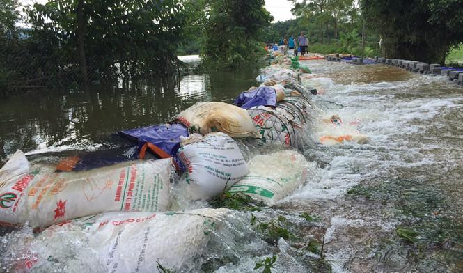 Lũ dâng cao hơn 14.000 hộ dân Hà Nội trong vùng nguy hiểm