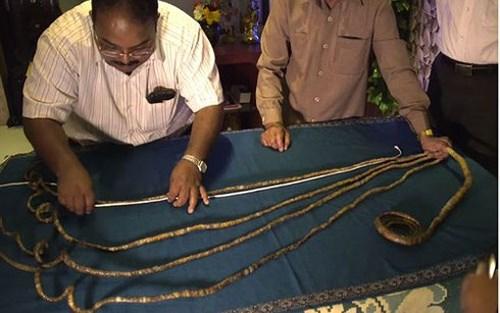 Người có móng tay dài nhất thế giới đã quyết định cắt bỏ sau 66 năm