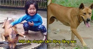Câu chuyện cảm động đằng sau bức ảnh 'Bé gái khóc bên chú chó bị làm thịt'