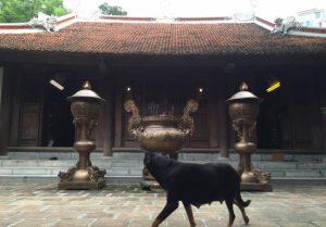 Kỳ bí về ngôi đền thờ 'Thần Chó' ở Hà Nội