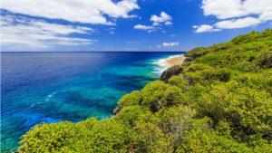 Quốc đảo tí hon nổi tiếng nhờ…một con vịt