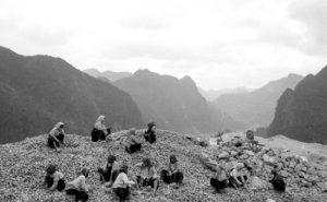 Triển lãm 'Thư Đồng Văn': Cao nguyên đá trong trẻo, nguyên sơ qua ảnh đen trắng