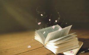 Văn chương tinh hoa và văn chương đại chúng