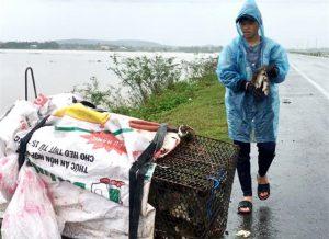 Nông dân xứ Quảng trổ tài bắt chuột, ngày thu cả tạ
