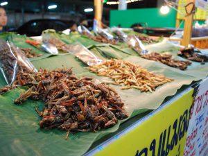 10 loài côn trùng hoàn toàn có thể ăn được ngon lành