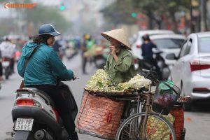 Mùa hoa bưởi thơm nức len lỏi khắp góc phố Hà Nội
