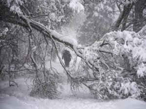 Tìm hiểu bí ẩn của bão tuyết trên trái đất