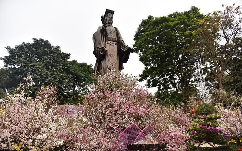 Hoa anh đào khoe sắc rực rỡ giữa Hà Nội