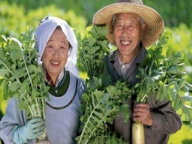 Nguyên tắc ăn uống của người Nhật giúp kéo dài tuổi thọ