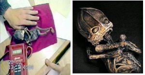 Sự thật đằng sau xác 'người lùn ngoài hành tinh' dài chưa tới 25 cm