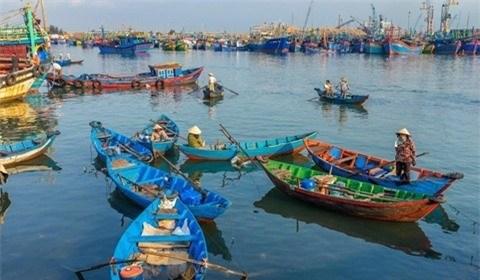 Trải nghiệm khó quên trên biển Quy Nhơn của phóng viên nước ngoài