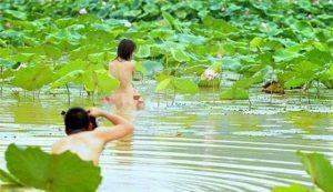 Chấn chỉnh việc ăn mặc phản cảm chụp ảnh tại các hồ sen