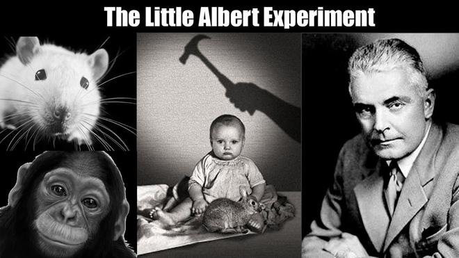 'Albert bé nhỏ' – một trong những thí nghiệm khủng khiếp nhất trong lịch sử