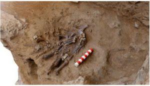 Bí ẩn mộ cổ hoa 70.000 năm chôn cất một giống loài hết sức man rợ