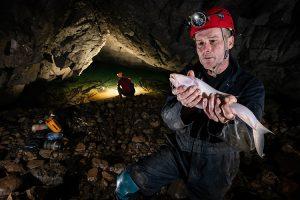 Loài cá lạ trong hang động dài 1,5m