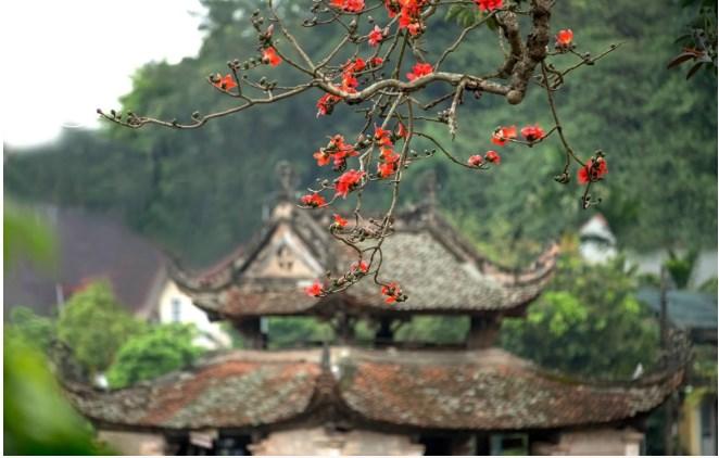 Khung cảnh thanh tịnh của chùa Thầy
