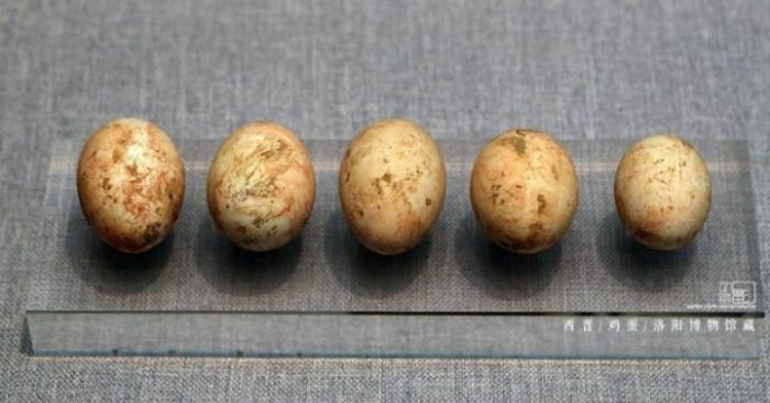 Quý tộc xưa thường bỏ trứng gà vào lăng mộ khi chôn cất