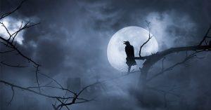 Quạ đen bay kín trời Vũ Hán báo trước điềm họa gì?