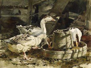 Thế giới màu nước chân thực của họa sĩ lãng du Trần Đông Nguyên