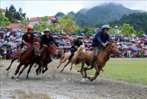 Giải đua ngựa truyền thống Bắc Hà – lễ hội thể thao, văn hóa đặc sắc vùng Tây Bắc