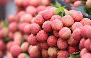 Bộ Công Thương cảnh báo khẩn về xuất khẩu nông sản sang Trung Quốc