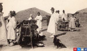 Huyền thoại về giống gà quý hiếm của Triều Tiên