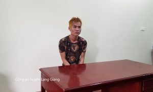 Lạng Giang (Bắc Giang): Bắt giữ nhiều đối tượng trộm cắp tài sản