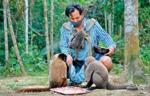 Khu bảo tồn cưu mang hàng trăm khỉ mồ côi