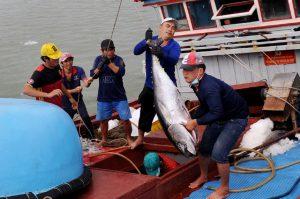 Ngư dân trúng đậm 'lộc biển' đầu năm