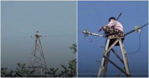 Xem màn giải cứu thót tim cô gái ngồi trên cột điện cao 100m