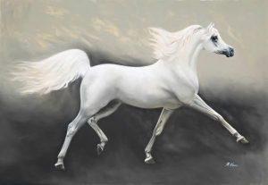 Ngựa Trắng – Truyện ngắn Trần Quốc Cưỡng
