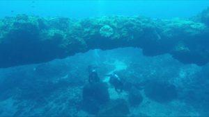 Quảng Ngãi: Khám phá núi lửa hàng triệu năm tuổi dưới đáy biển