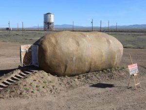 Chi 200 đôla để ngủ đêm trong củ khoai khổng lồ