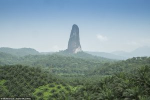 'Cây kim đá' khổng lồ giữa khu rừng đầy rắn ở châu Phi