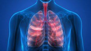 5 cách giữ cho phổi khỏe mạnh