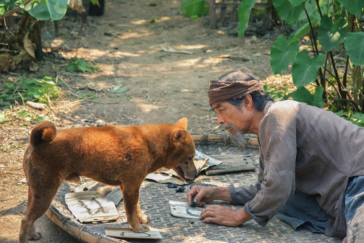 'Cậu Vàng' – Món quà xuân tuyệt vời, chưa từng có của Điện ảnh Việt Nam