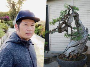 Ngắm vườn cây cảnh cực đẹp của ca sĩ Bằng Kiều