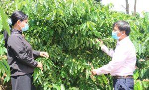 Đắk Nông: Nguồn vốn chính sách chung sức xây dựng nông thôn mới