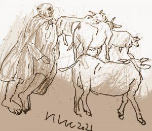 Tướng chăn bò
